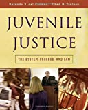 Juvenile Justice: The System, Process and Law (Available Titles Cengagenow)