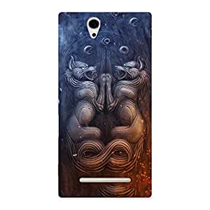 Delighted Hell Door Back Case Cover for Sony Xperia C3