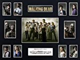 The Walking Dead Season 1 (16x12) Display