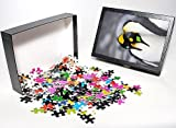 Photo Jigsaw Puzzle of King penguin (Apt...