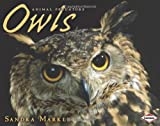img - for Owls (Animal Predators) book / textbook / text book