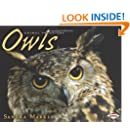 Owls (Animal Predators)
