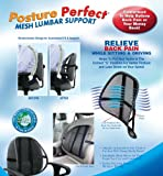 Posture Perfect Mesh Lumbar Support