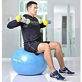 Reebok Cayn Gym-Ball 65CM