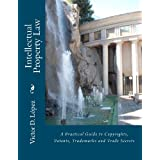 Intellectual Property Law: A Practical Guide to Copyrights, Patents, Trademarks and Trade Secrets ~ Victor D. L�pez