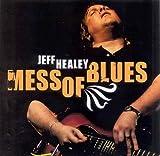 echange, troc Jeff Healey - Mess Of Blues