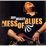 Mess of Blues ~ Jeff Healey