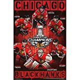 (22x34) Chicago Blackhawks 2013 Stanley Cup Champions NHL Sports Poster at Amazon.com