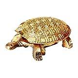 Satyamani Gold Plated Tortoise
