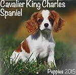 Cavalier King Charles (Mini) 2015 (Mini Wirestitched)