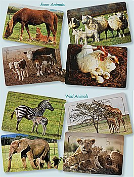 Cheap Constructive Playthings Real Life Mother & Baby Animals Puzzles – Both Sets (B004ITXLAU)