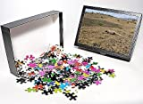 Photo Jigsaw Puzzle of WAT-14709 Komodo ...