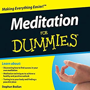 Meditation For Dummies Audiobook Audiobook