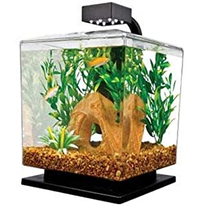 Tetra 29137 water wonder aquarium kit black for Betta fish tanks amazon