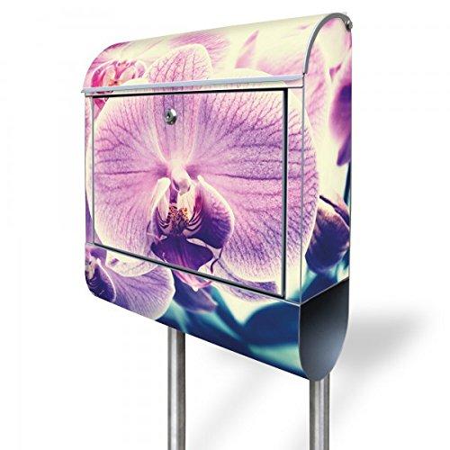 banjado - Standbriefkasten mit Zeitungsrolle Edelstahl Standfuß 38x150x12cm mit Motiv Orchidee Vintage