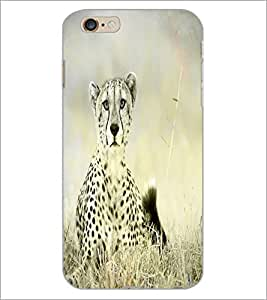 PrintDhaba Quote D-4348 Back Case Cover for APPLE IPHONE 6 PLUS (Multi-Coloured)