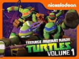 Teenage Mutant Ninja Turtles: Learn the Theme Song!