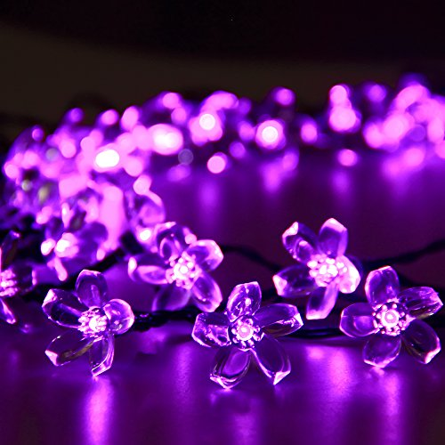 Solar Outdoor String Lights By Innoo Tech: Innoo Tech Solar Outdoor String Lights 21ft 50 LED Purple