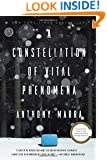 A Constellation of Vital Phenomena: A Novel