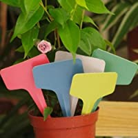 100PCS 6x3CM Plastic Plant T-type Tags Marker Labels