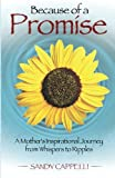 Because of a Promise: A Mothers Spiritual Journey from Whispers to Ripples