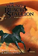 The Young Black Stallion by Walter Farley, Steven Farley cover image