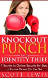 Knockout Punch for the Identity Thief: 7 Secrets to Online Security for Stay at Home Moms On the Go
