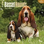 Basset Hounds 2016 Square 12x12 Wall...