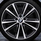 Original BMW Alufelge 5er F10-F11-LCI M V-Speiche 464 Ferricgrey in 20 Zoll für hinten