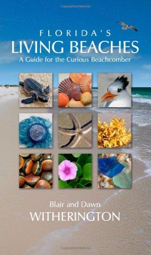 Florida's Living Beaches: A Guide for the Curious Beachcomber