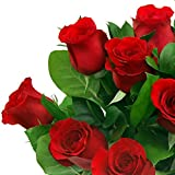 Clare Florist 12 Luxury Red Roses Fresh Flower Bouquet - the Perfect Valentines Day Gift
