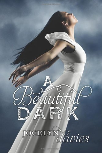 Cover of A Beautiful Dark
