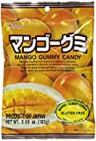 Japanese Fruit Gummy Candy from Kasugai - Mango - 102g