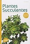 Plantes succulentes : Comment les cho...