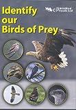 Identify our Birds of Prey