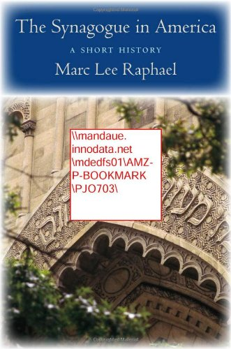 The Synagogue in America: A Short History, Marc Lee Raphael