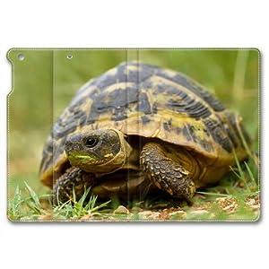 Ipad Air leather Case,Tortoise Ipad 5 Cases,Custom Ipad Air High-grade