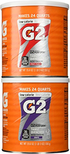 Gatorade G2 Combo Grape/Fruit Punch Powder Mix 19.6 Oz (2 Pack) (Gatorade G2 Powder Fruit Punch compare prices)