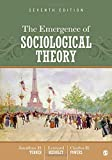 img - for The Emergence of Sociological Theory book / textbook / text book