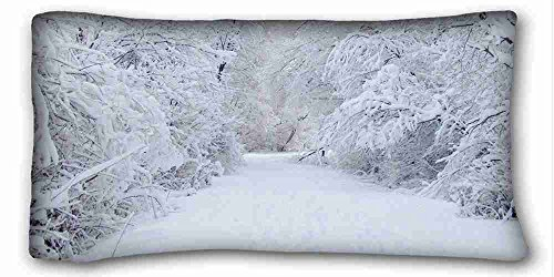 Custom Characteristic ( Nature Trees nature winter ) Custom Zippered Pillow Case 20x36 inches(one sides) from Surprise you suitable for Full-bed PC-Green-26452