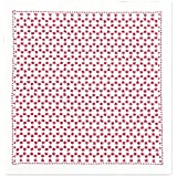 オリムパス製絲 刺し子キット 一目刺しの花ふきん 角亀甲つなぎ 白 SK303