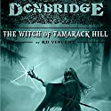 Donbridge: The Witch of Tamarack Hill Audiobook by RD Vincent Narrated by J. Scott Bennett