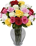 Two Dozen Long Stem Assorted Roses with Jordan Vase
