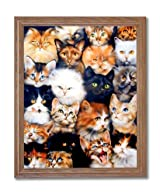 Cat Kittens Kitty Collage Kids Room Wall Picture Oak Framed Art Print