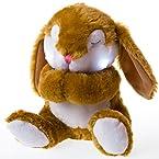 Praying Plush Bunny
