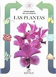 Las Plantas/ Plants (Hiperlibros De La Ciencia) (Spanish Edition)