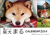 柴犬まる カレンダー 2014年