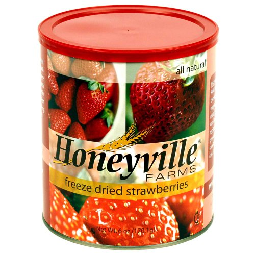 Freeze Dried Strawberries - 6 Ounce Can (Honeyville Freeze Dried Products compare prices)