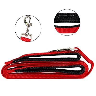 ColorPet Dog Leash Dual Handled Black Nylon Dog Leash Extra Long Large Dog Leash Soft Padded Handles One Inch Wide -8-Feet and 2 Handles (Red)