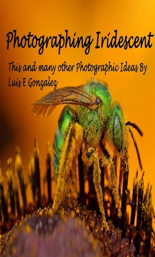 Photographing Iridescence : Plus many other photographic ideas